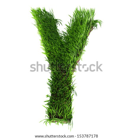 A 3D rendering of an upper case Y in grass