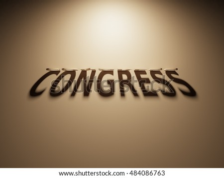 A 3D Rendering of the Shadow of an upside down text that reads Congress.