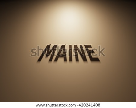 A 3D Rendering of the Shadow of an upside down text that reads Maine,