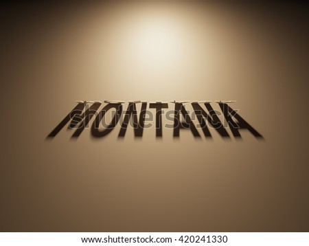 A 3D Rendering of the Shadow of an upside down text that reads Montana.