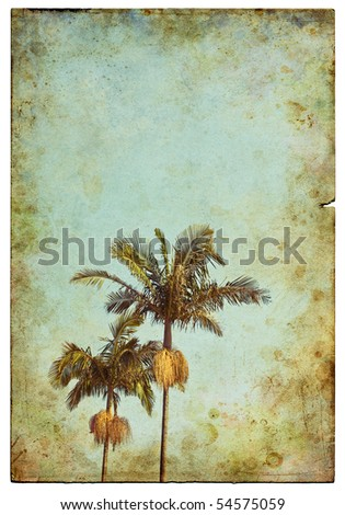 A damaged old postcard with two palm trees in the foreground. - stock photo
