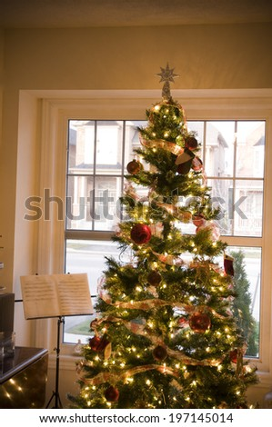A decorated Christmas tree in front of a window.