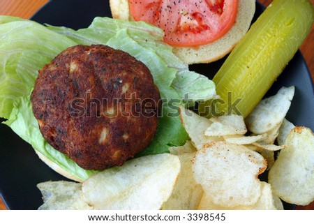 A delicious authentic Maryland Blue Crab Cake Sandwich
