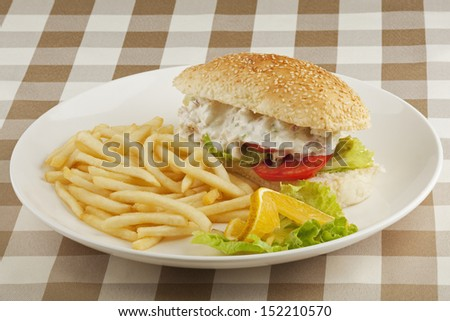 A delicious chicken salad sandwich with french fries - stock photo