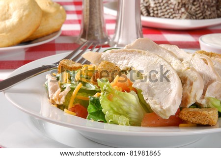 A delicious green salad with sliced chicken breasts