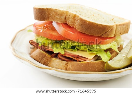 A delicious ham, bologna and cheese, sandwich on wheat bread, closeup with white copy space