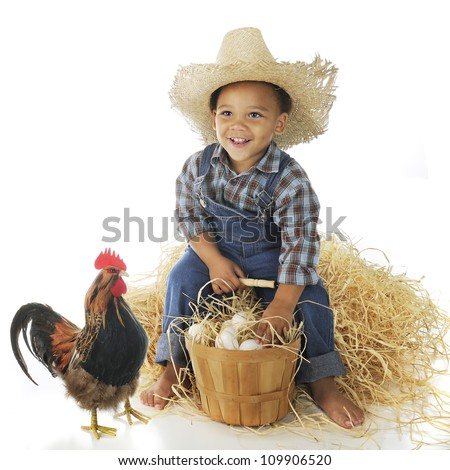 A delighted preschool farm boy sitting on a hay stack with a basketful of eggs, a rooster standing nearby.  On a white background.