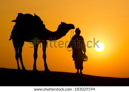 ... nose camel through Thar Desert dramatic sun background - stock photo