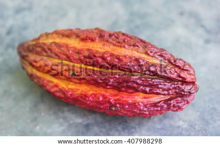A detail view of ripe cocoa pod in Huayhuantillo village near Tingo Maria in Peru, 2011 - stock photo
