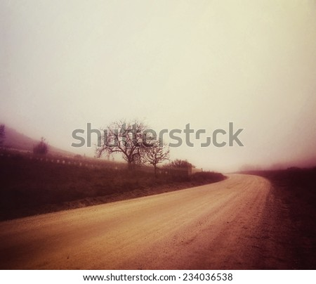 a dirt road in the fog on an autumn day toned with a retro vintage instagram filter effect - stock photo
