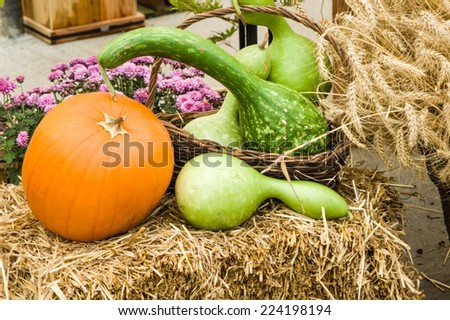 A display of squash pumpkins and gourds on a hay bale - stock photo