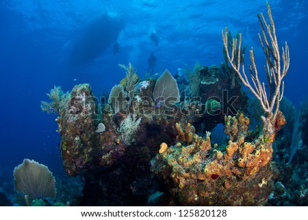 A diver explores a diverse coral reef in Grand Cayman.  This island in the Caribbean is well known for its fantastic scuba diving and beautiful white sand beaches. - stock photo