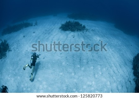 A diver explores a sand flat between reefs in Grand Cayman.  This island in the Caribbean is well known for its fantastic scuba diving.