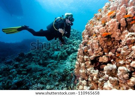 A Diver looks at a hard coral underneath a boat on a coral reef - stock photo