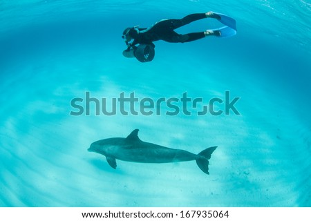A diver uses an electric scooter to play with a common Bottlenose dolphin (Tursiops truncatus) in the crystal clear waters off the Turks and Caicos Islands in the Caribbean Sea. - stock photo