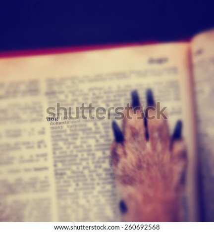 a dog's paw on the word dog in an old grungy dictionary with a very shallow depth of field toned with a retro vintage instagram filter effect app or action - stock photo