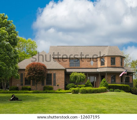 A dog sits in the shade of a huge tree in front of a brick suburban home on a sunny summer day. - stock photo