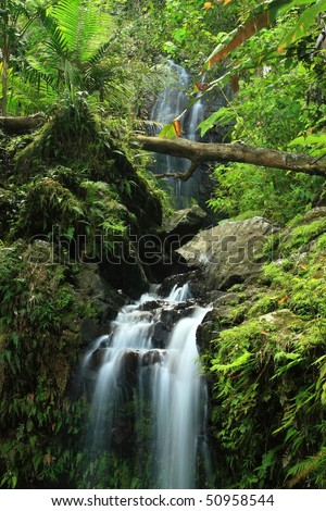 A double waterfall on Cascada Juan Diego in the El Yunque rainforest in the Caribbean National Forest, Puerto Rico - stock photo
