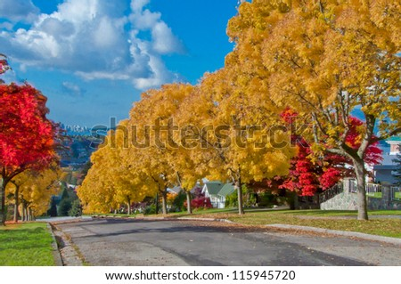 A downhill street with the trees covered with yellow and red leafs. Vancouver. Canada. - stock photo