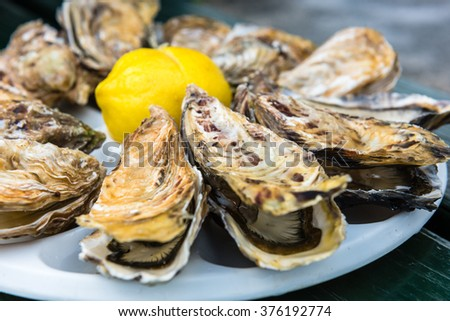 A dozen oysters and a lemon on a plastic plate eating outdoors near the sea - stock photo