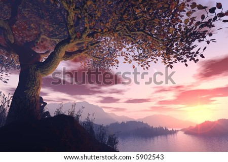 A dreamer sitting under a tree during a stunning sunset - stock photo