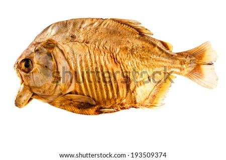 a dried pirana isolated over a white background - stock photo