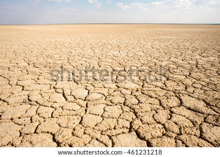 A dry cracked earth landscape of Haakskeen Pan in South Africa