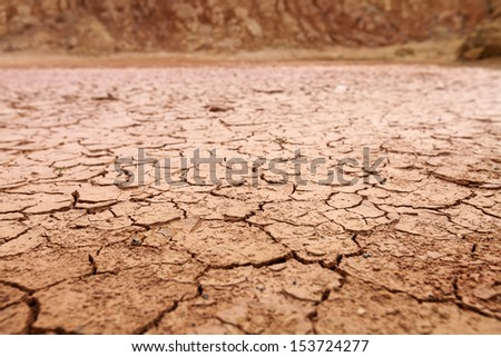 A dry cracking red earth terrain.