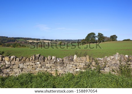 a dry stone wall in amongst agricultural scenery in the yorkshire wolds england under a clear blue sky in autumn - stock photo