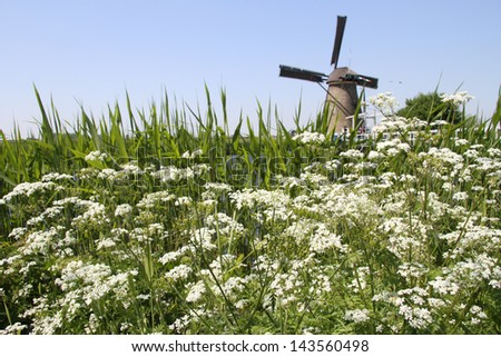 A Dutch windmill with flowers