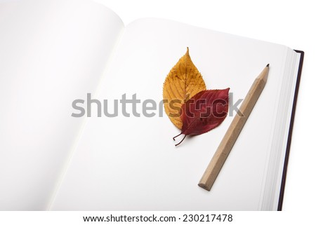 A empty(blank) spread book(sketch book, note, diary) and red leaf and wooden pencil isolated white at the studio.  - stock photo