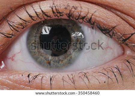 a eye macro. Woman eye. Macro image of human eye. - stock photo