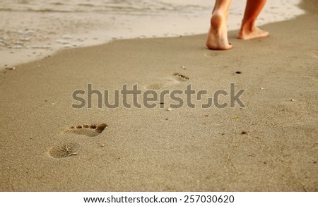 a family footprints in the sand on the beach - stock photo