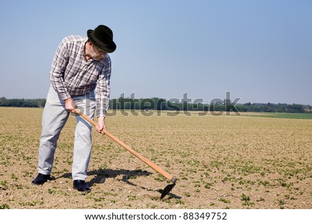 a farmer checks the small plants in a field of agriculture. - stock photo
