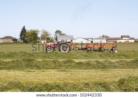 A farmer uses tools to spread hay on the field where it will dry/Haying the Field/Tools used for haying a field - stock photo