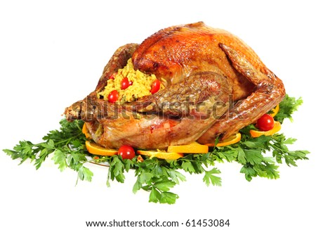 A festive or thanksgiving turkey on a bed of italian flat-leaf parsley, garnished with slices of orange and cherry tomatoes and stuffed with rice - stock photo