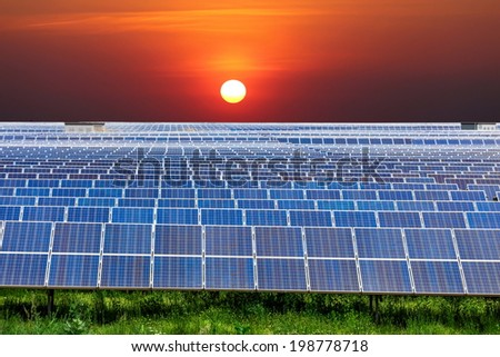 a field of solar panels with the green grass in the foreground and a colorful sunset in the background - stock photo