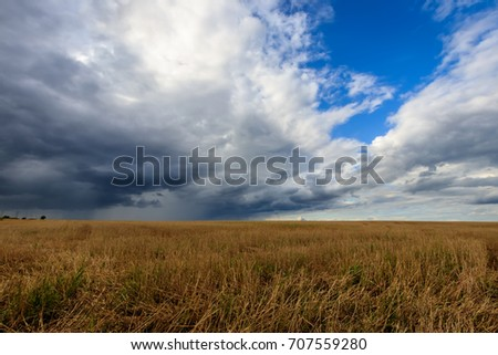 A field with mown rye in autumn with an approaching rain and a cloudy sky. Landscape.