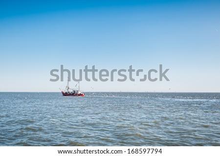 A fish trawler followed by seagulls - stock photo