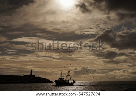 A fishing boat entering the harbour in beautiful sunlight