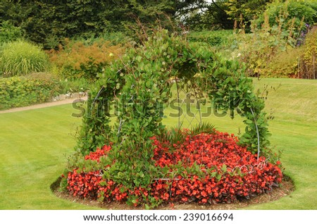A Flowerbed of Red Begonias with a Trellis of Clematis in a Garden, near Barnstaple, in the County of Devon, England, UK - stock photo