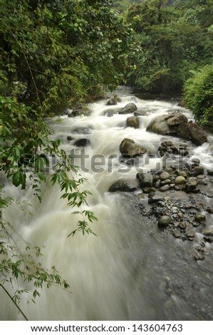 A flowing creek in the mountains near Cali, Colombia