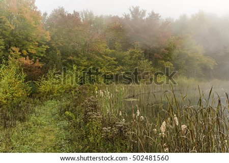 A foggy Autumn morning on snake pond on the Shaverton Trail in Andes, New York in the Catskills Mountains