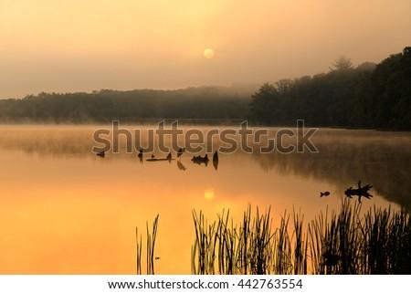 A foggy sunrise at Locust Lake State Park, Schuylkill County, Pennsylvania, USA. - stock photo
