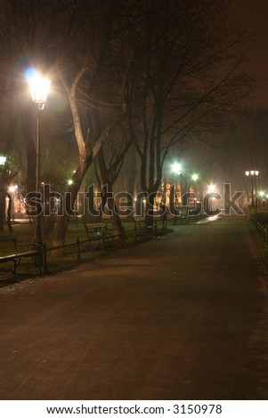a fogy pathway in the a park