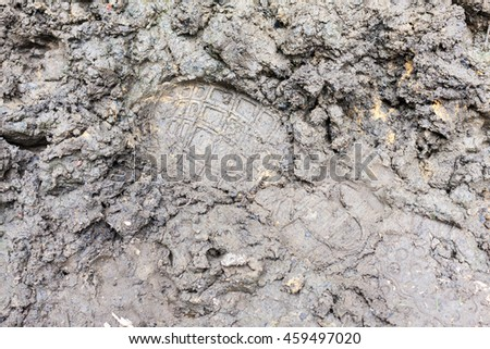 A footprint of a trainer left in wet soft mud