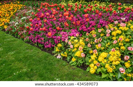 A formal garden border of Spring flowers.