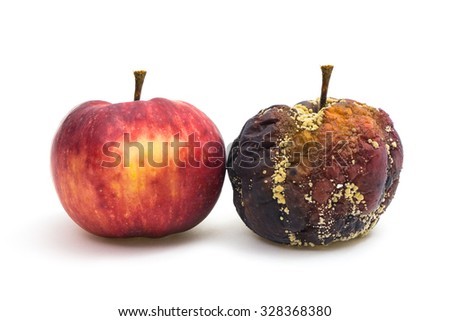 A fresh and a rotten apple next to each other - stock photo