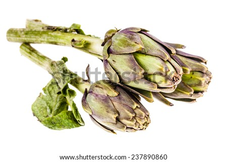 a fresh green artichoke isolated over a white background - stock photo