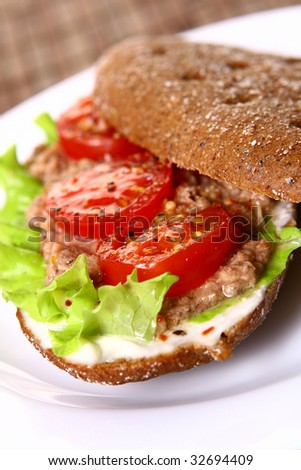 a fresh sandwich with tuna and vegetables
